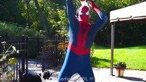 #1Frozen Elsa PRANK Spiderman- POOL FUN - Superheroes in Real Life and Learn Colors | Superheroes | Spiderman | Superman | Frozen Elsa | Joker