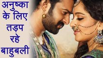 Baahubali Prabhas is Dying to work with Girlfriend Anushka Shetty in this film | FilmiBeat