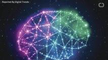 Neuroscientists Use Deep Brain Stimulation For Tourette Patients