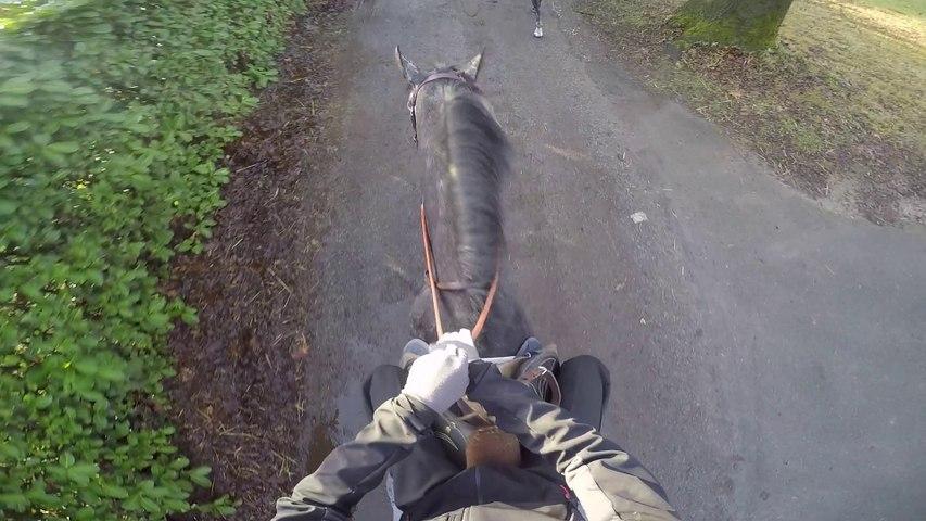 Embarquez sur un cheval de course de l'écurie Charles Gourdain