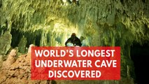 World's biggest ever underwater cave filled with ancient Mayan artefacts discovered in Mexico