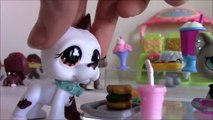 LPS: Am I Perfect yet..? {bullying awareness video} (READ DESC.)