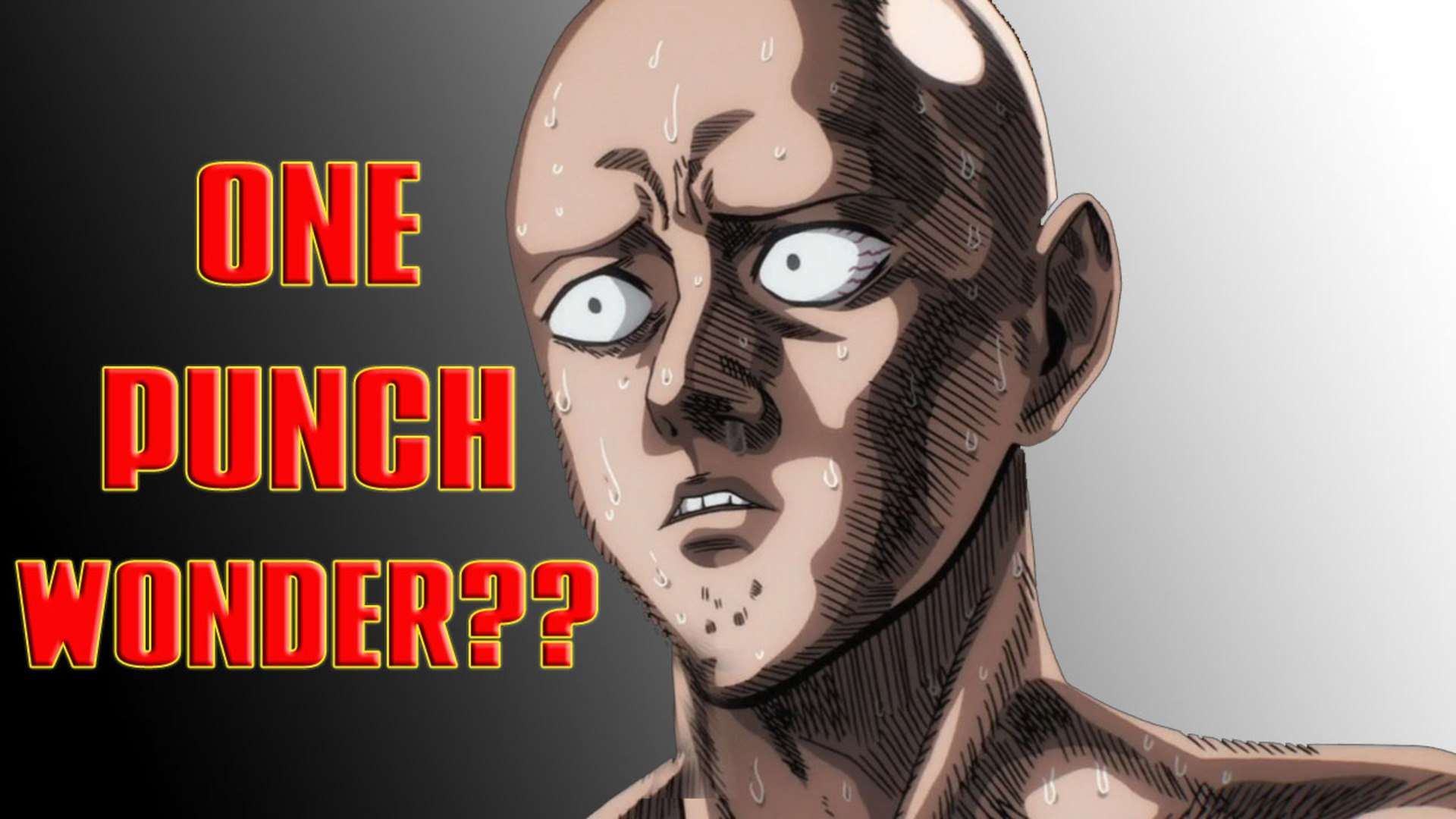 Will One Punch Man Season 2 Be a Major LETDOWN??