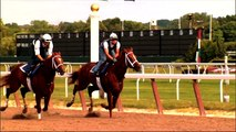 NY Horse Racing & Agriculture Alliance: Racing for NY - Where Economic Development is the Winner