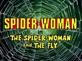Spider-Woman ( 1979-80 )  E11 - The Spider-Woman and The Fly