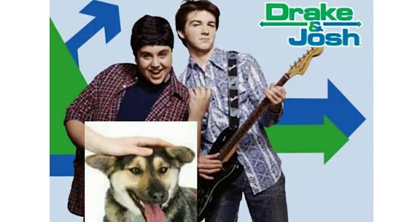 PETTING DOG MEME. (Important) [MEME REVIEW]   #2