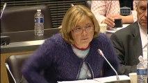 Commission des affaires économiques et commission du développement durable : Mme Ségolène Royal, ministre - Mardi 22 novembre 2016