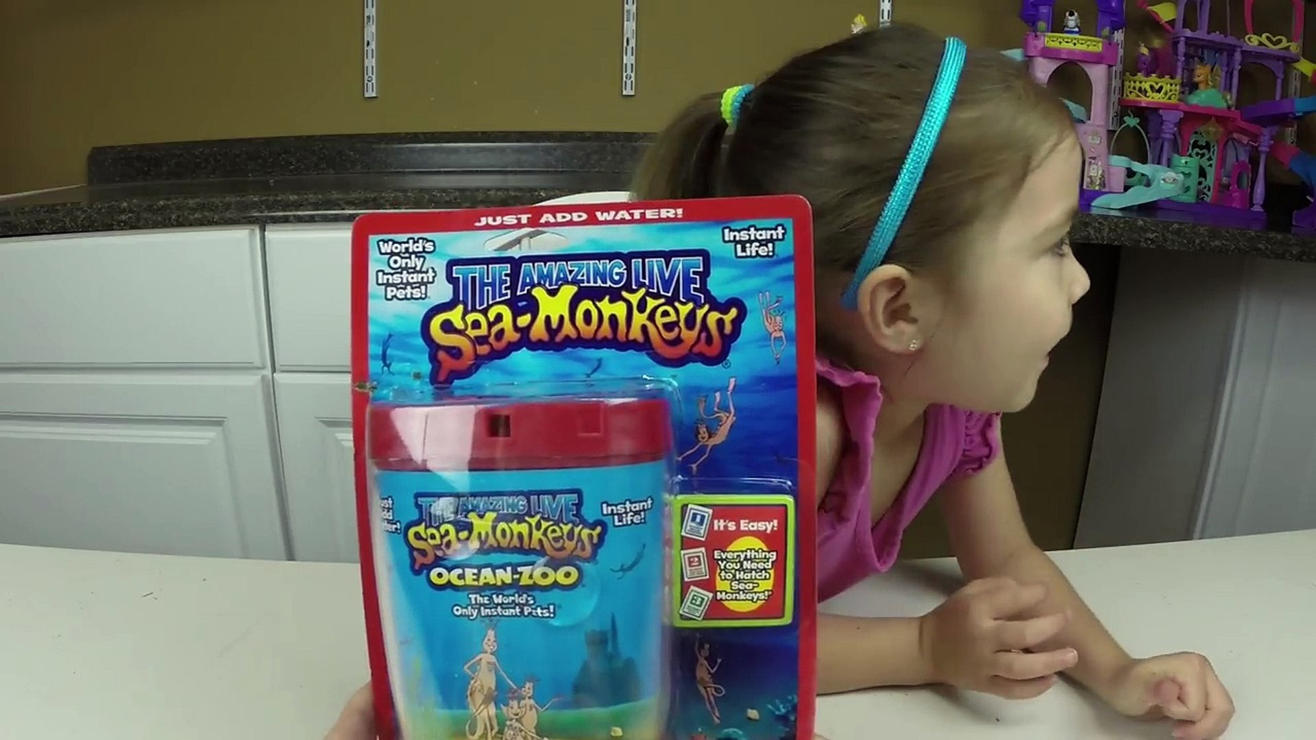The Amazing Live Sea Monkeys! Cute & Easy Pets for Kids | Fun Kids Activity Review