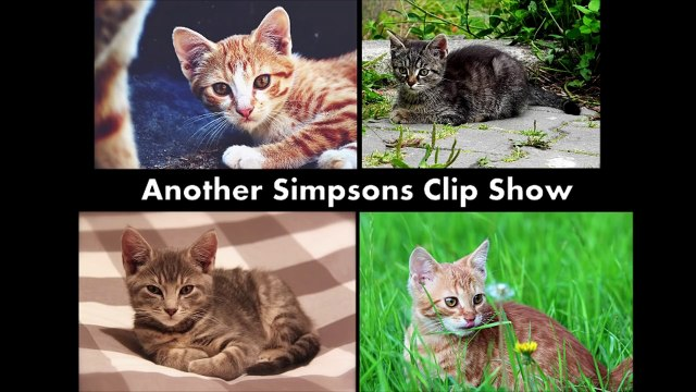 60 Second Kittens - Another Simpsons Clip Show
