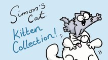 Kitten Chaos - Simon's Cat   COLLECTION