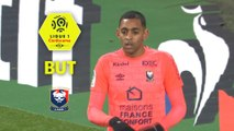 But Ronny RODELIN (11ème) / AS Saint-Etienne - SM Caen - (2-1) - (ASSE-SMC) / 2017-18