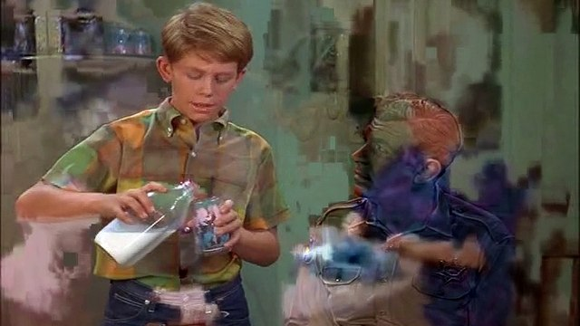 The Andy Griffith Show S08E11-Andys Investment