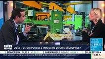 Fabuleuse French Fab  : Gris Découpage et l'emploi (Céline Gris)