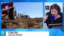 Les pratiques agricoles aggravent-elles les inondations ?