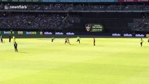 Streaker invades pitch during England vs Australia in Perth