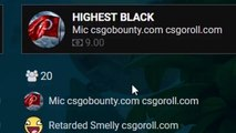 SO I FOUND THIS NEW SITE... (CSGO Roll Gambling 12)