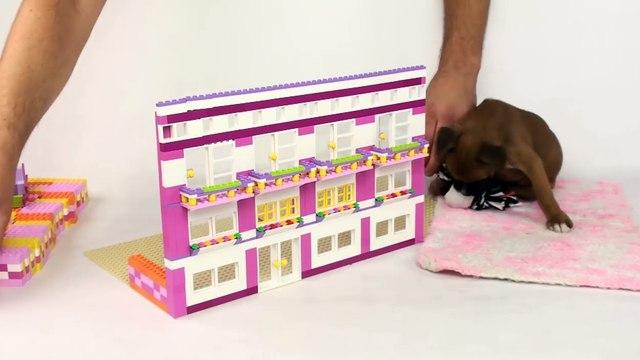 Lego Misty: Lego Friends Doghouse 2 by Misty Brick.