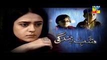 Shab e Zindagi Episode 17 Promo HUM TV Drama