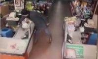 Müşteri Kılığında Cep Telefonu Çalan Hırsız Kamerada