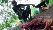 Prawns pickele Recipe _ Prawns Pickle By 106 years old Mastanamma