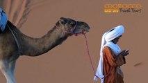 Merzouga tour from Marrakesh and Ouarzazate