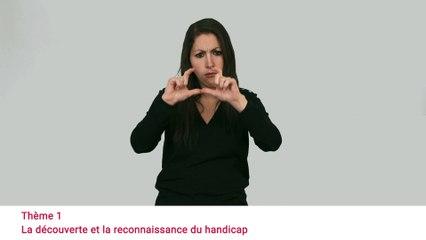Consultation Egalité Handicap - Vidéo en LSF - Présentation des appel à témoignage
