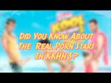 Did You Know  About  The  Real Porn Stars In KKHH3?