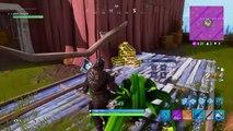Shouldve died ,  Fortnite