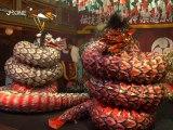 ASIE INSOLITE – Hamada, le papier et les serpents