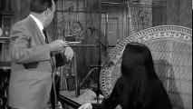 Addams Family S1 E05 - The Addams Family Tree (10-16-64)