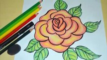Como Desenhar E Pintar Uma Rosa Passo A Passo Video Dailymotion