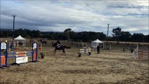 Compétition de saut d'obstacles - Equitation