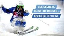 Ski freestyle - JO 2018 : Les secrets du ski de bosses, discipline explosive