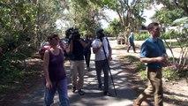 Mosquitos infectados para combatir enfermedades en Miami