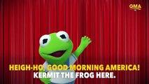 """""""Muppet Babies"""" va faire son retour en 3D prochainement sur Disney Junior aux Etats-Unis"""