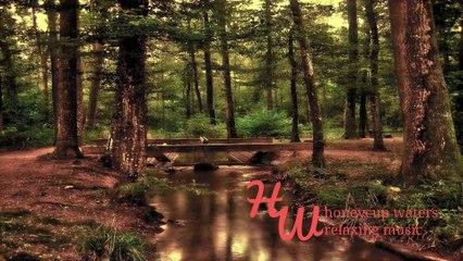 Happy Flute Music, Relaxing Music Flute Honey81-s-dm