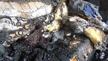 Evleri yanan Duran ailesi yardım bekliyor