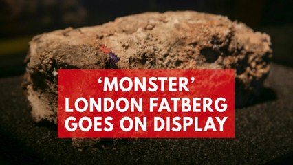 'Monster' fatberg goes on display in London
