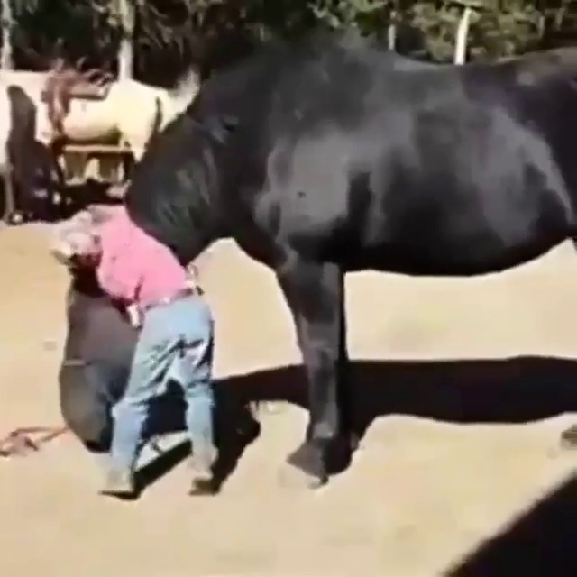 Boy Horse riding – Love Riding