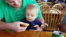 La tête hilarante de ce bébé goûtant son premier bébé