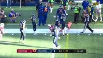 Cardinals vs. Seahawks | NFL Week 17 Game Highlights