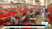 Posted workers: Social dumping continues despite Germany's recent efforts