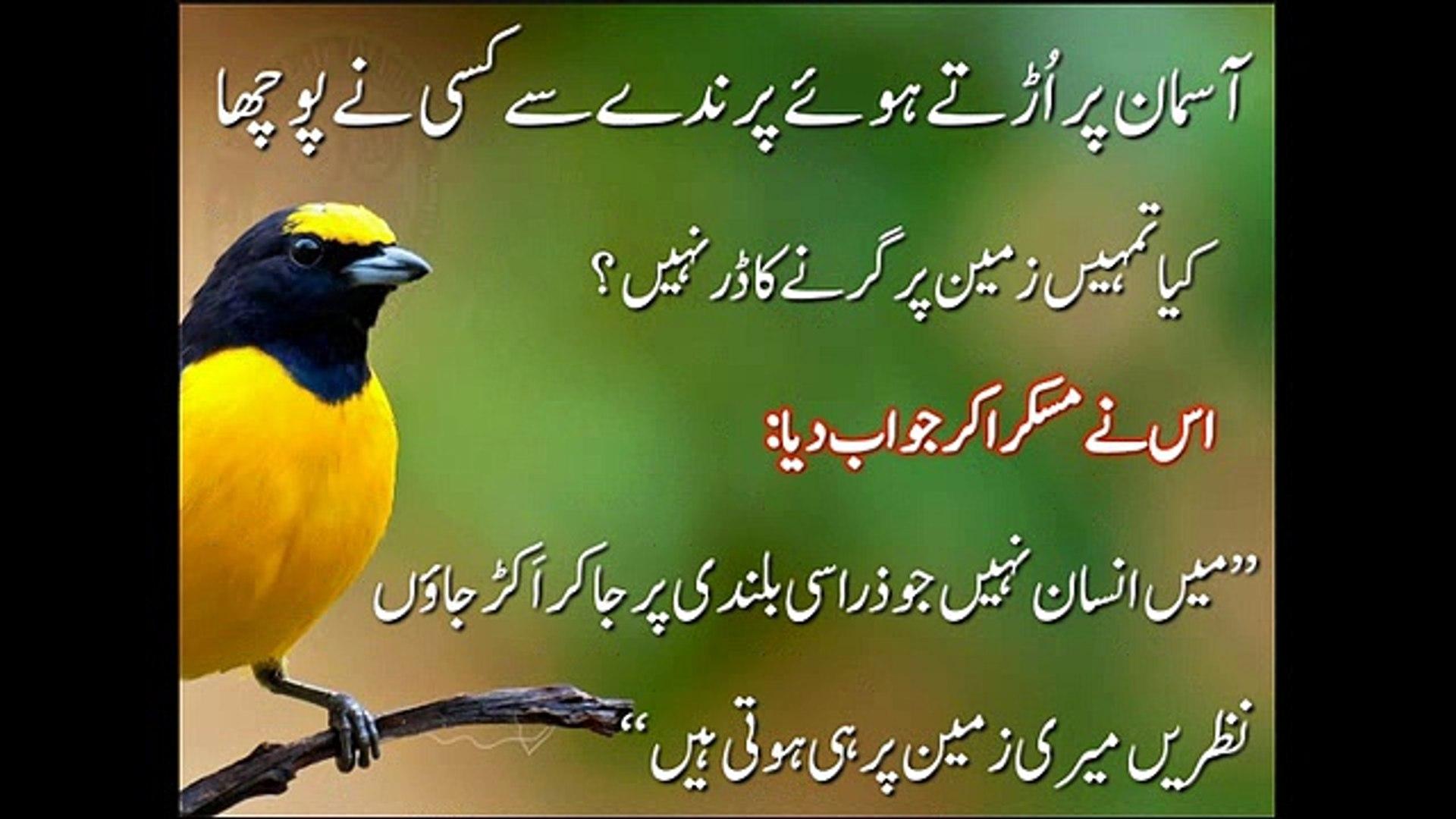 Interesting And Beautiful Urdu Quotes Interesting World