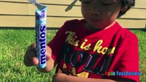 DIET COKE AND MENTOS EXPERIMENT CHALLENGE Easy science experiment for kids
