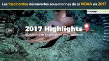 Les fascinantes découvertes sous-marines de la NOAA en 2017