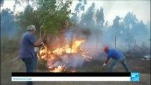 """Incendies au Chili : 7 morts dans le """"pire désastre forestier"""" du pays"""