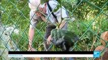 France : le déminage continue sur les champs de bataille de la Première guerre mondiale