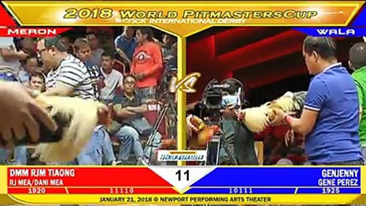 WORLD PITMASTER CUP 2018 FIGHT 11 DMM RJM TIAONG VS GENJENNY