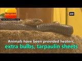 ठंड से बचने के लिए चंडीगढ़ के चिड़िया घर में लगाए गए हीटर, जानवरों को दी तिरपाल की शीट