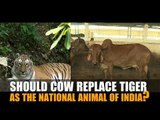 Should cow replace tiger as the national animal of India?